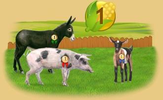 Classement des fermiers par jours de présence